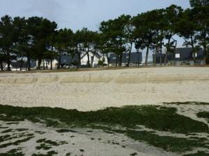 Falaise de sable d'1.80 m sur la plage de Cap Coz le 31 Octobre 2009