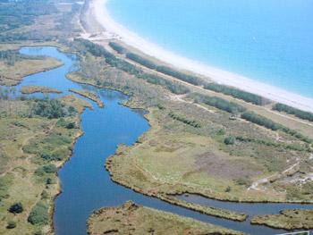 Le-marais avec retour à l'état de lagune comme avant ?