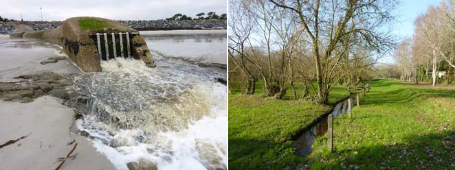 Les deux extrêmes du marais : l'exutoire et le ruisseau de Menez Bruz au Vorlen