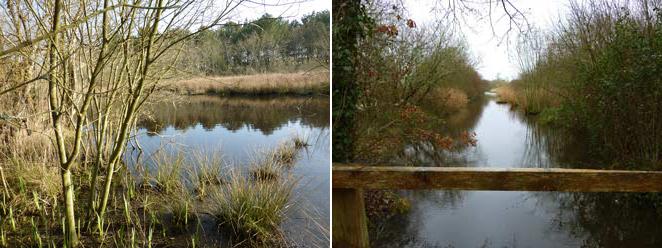 Le marais qui ne verra pas la mer au Vorlen et le ruisseau de Penfalud vers Renouveau