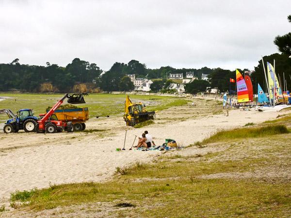 Grosse activité à Cap Coz  devant des touristes au calme et au bon air iodé !