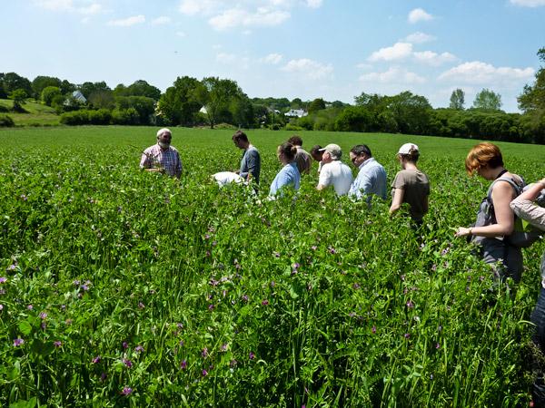 Puis tous dans les champs fleuris pour les explications d'un agriculteur/éleveur de bovins du GAR