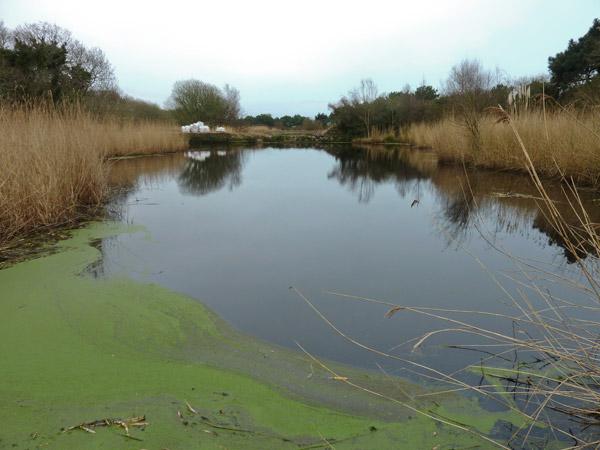 Début des travaux en novembre 2012 sur la vanne de la digue de Cleut Rouz, datant de 1927