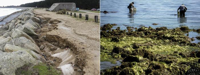 Photos 01 et 02 : la Nature sait généralement se défendre seule contre l'homme et ses « blockhaus », comme à Cleut-Rouz début 2014, mais parfois, elle a encore besoin des associations environnementales pour aborder enfin certains problèmes, comme celui des algues vertes (Cap Coz le 22 aout 2013).