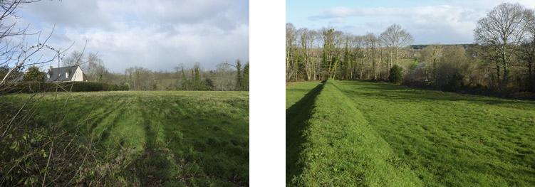 Photo 07 gauche : une parcelle convoitée près de Sainte -Anne. Photo 08 : vue de la parcelle – On distingue, à travers les arbres, la route montant vers  Saint-Evarzec.