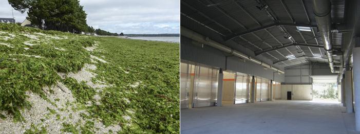Photo 14 gauche : algues vertes à Cap Coz le 20 10 2013. Photo 15 : vue des cellules de compostage lors de la visite d'inauguration de Kérambris du 6 juillet 2013.
