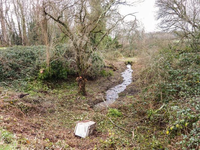 Photo 03 : le nettoyage a exhumé  le  vieux frigo balancé là de la route !