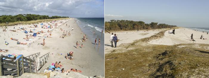 de aout 2013 à mars 2014, la plage de Cleut-Rouz s'est étalée ...vers l'intérieur des terres !