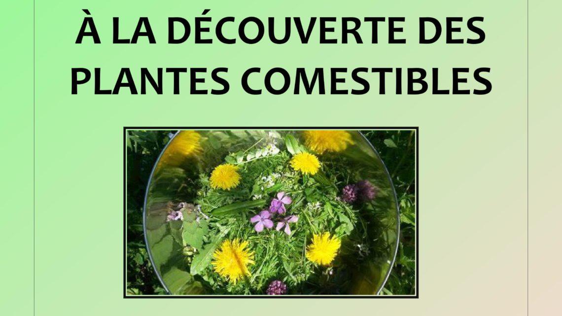 atelier-promenade «à la découverte des plantes comestibles»
