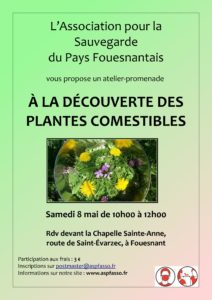 """atelier-promenade """"à la découverte des plantes comestibles"""" @ chapelle Sainte-Anne"""