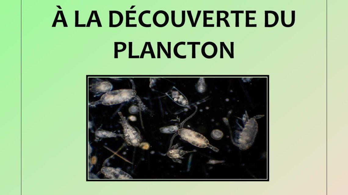 Atelier Découverte du Plancton