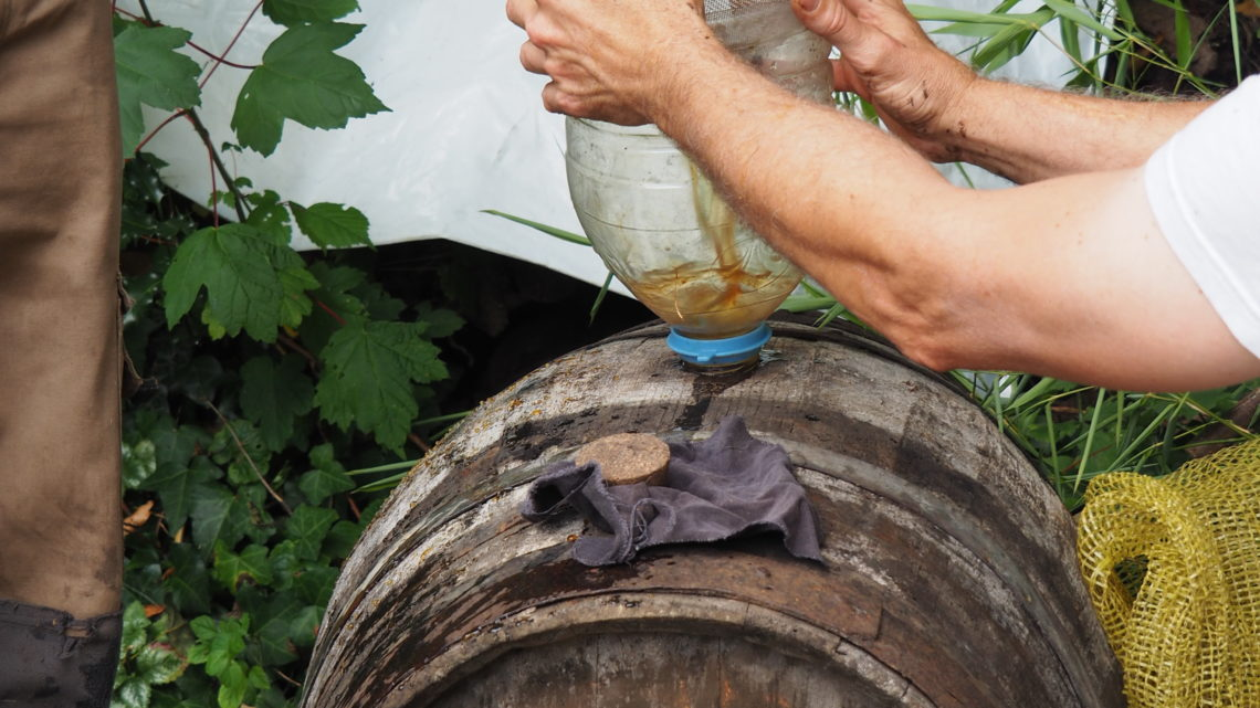 Pressage des pommes à Ty Forn